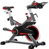 FITFIU Fitness BESP-100 - Bicicleta indoor con disco de inercia de 16kg y resistencia regulable, Bici de entrenamiento fitness con sillín ajustable, pulsómetro y pantalla LCD